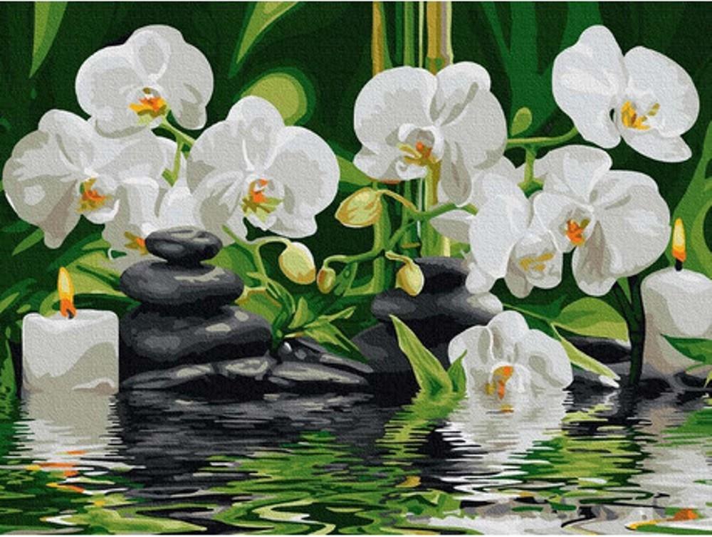 Pictura pe numere - Orhidee pe apa 30 x 40 cm