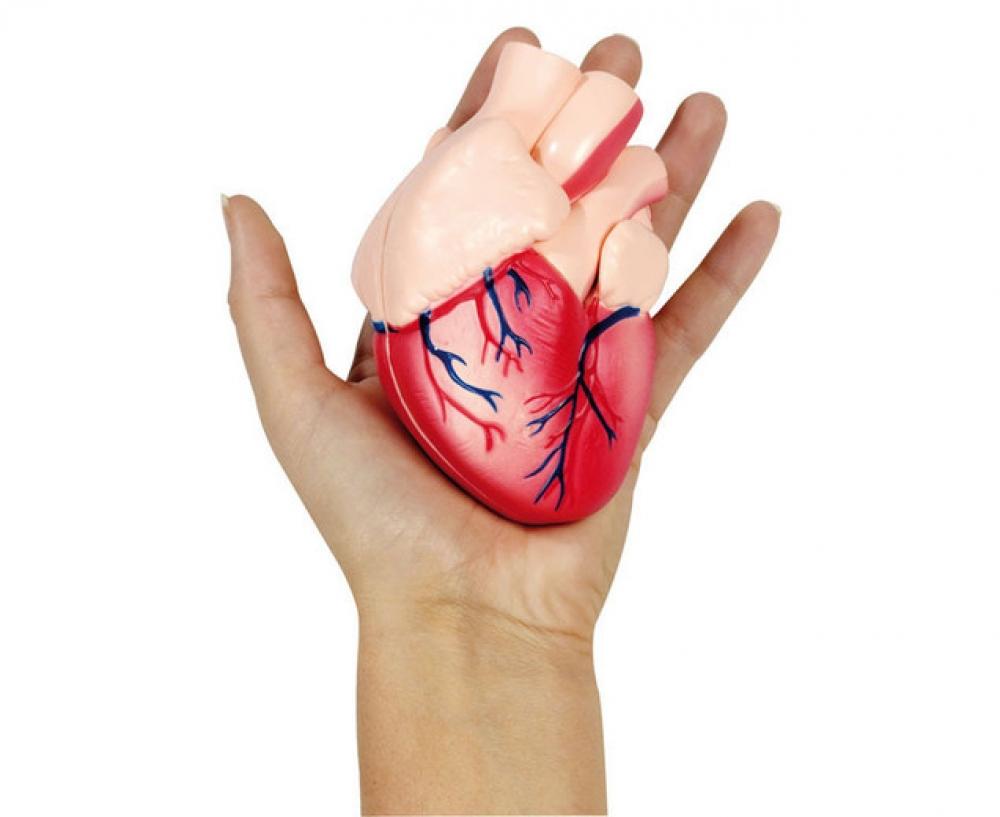 Machetă - Inimă 12 x 7 x 8 cm
