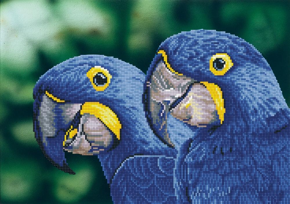 Tablou cu diamante - Papagali albastri